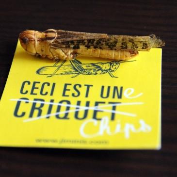 blog_cuisine_lyon_insectes_comestibles_jiminis_sauterelle_revelations_gourmandes
