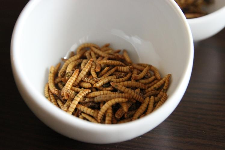 blog_cuisine_lyon_insectes_comestibles_jiminis_vers_revelations_gourmandes