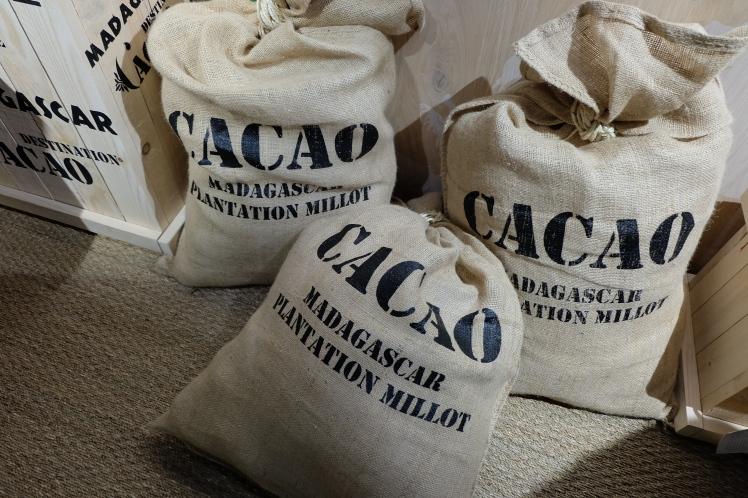 Blog-Lyon-bonnes-adresses-Valrhona-cité-chocolat-expo-Madagascar