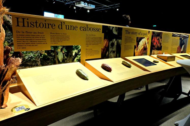 Blog-Lyon-bonnes-adresses-Valrhona-cité-chocolat-expo-Madagascar-musée